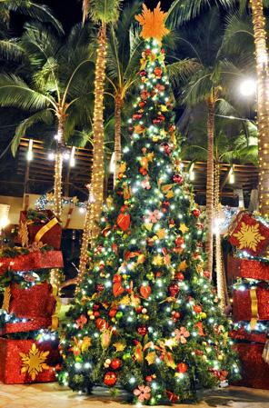 RHC_holiday_lighted