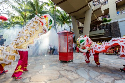 Lion Dance in Royal Grove