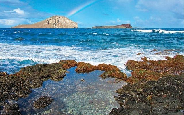 ハワイ・マカプウ岬とヒーリングプール