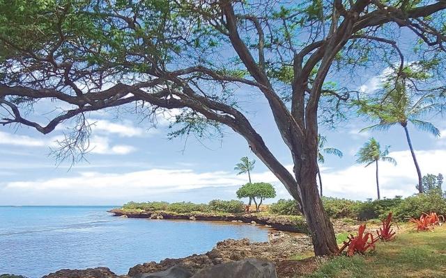ハワイのパワースポット:カイアカ湾