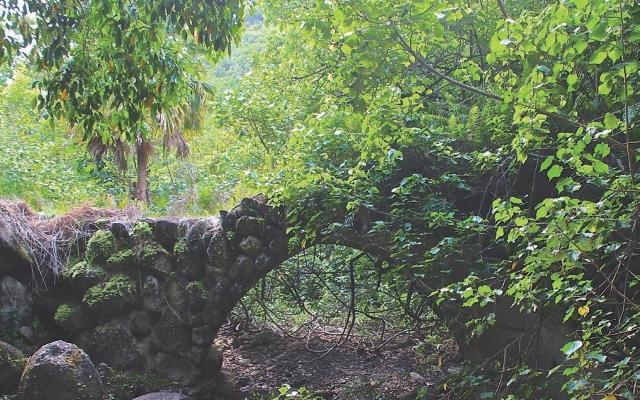 ハワイのパワースポット:モアナルア渓谷