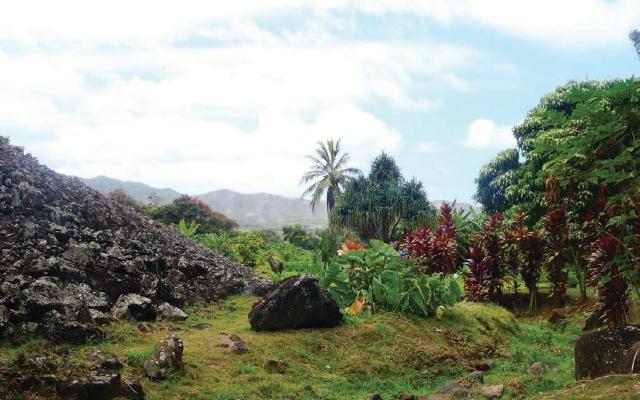 ハワイのパワースポット:ウルポーヘイアウ