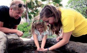実際に水に手を入れて海洋生物について学べるコーナー