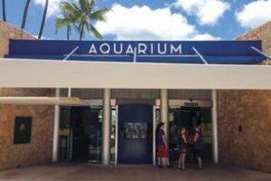 ワイキキ水族館の入り口