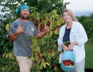 コーヒー農園「コナ・クラナ・ファーム」