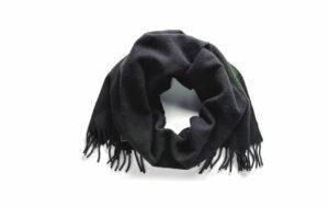 シャイノーラのスカーフ