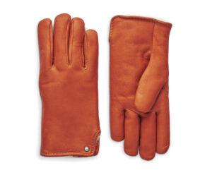 シャイノーラの手袋